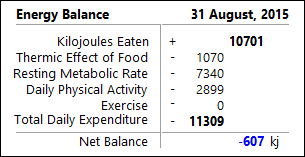 Energy Balance Panel (kilojoules)